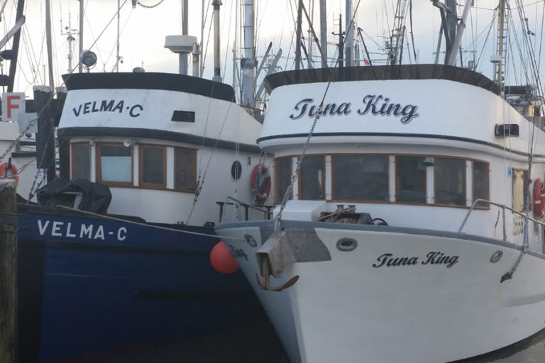 Fishing Gallery